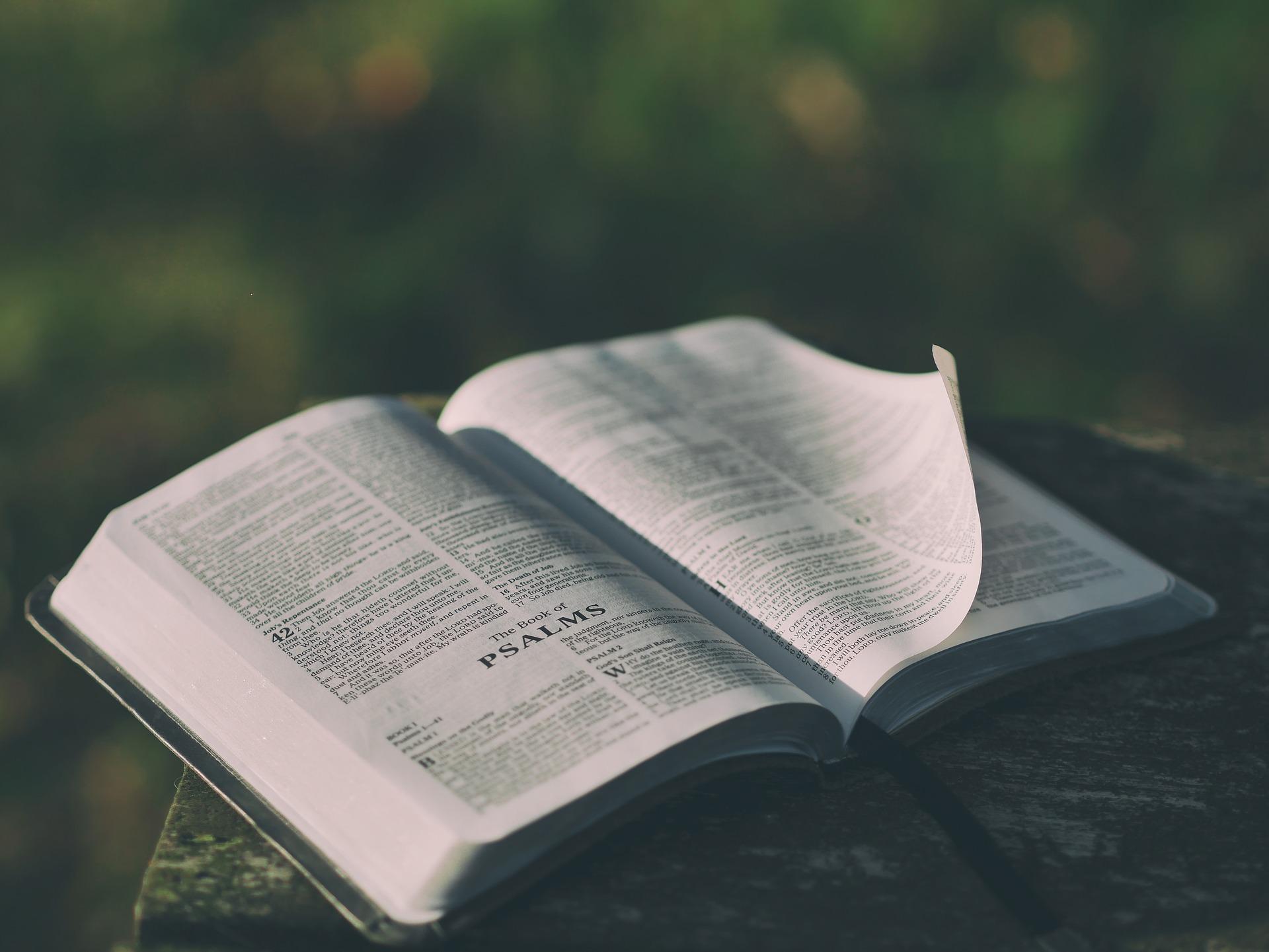 El papel del narrador en una novela