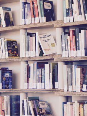 Cómo elegir el narrador de tu historia (3): el narrador equisciente