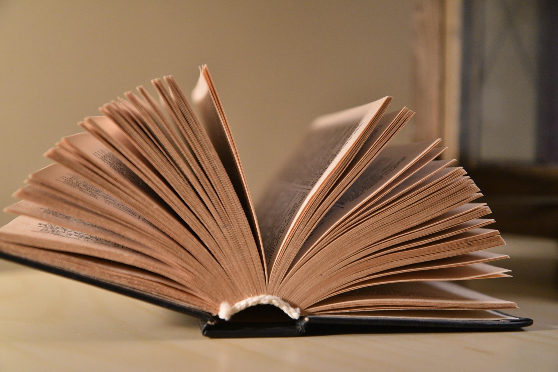 El manejo del tiempo en las novelas: las transiciones